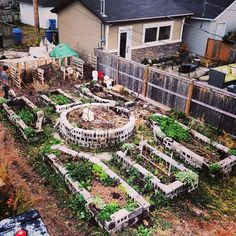 This is an early image of the raised beds we put in at our urban homestead in Calgary, AB, in 2013. The beds are a combination of about 100 cinder blocks from our old front yard retaining wall, and another 150 or so cinder blocks that we harvested for free on Kijiji.   The soil is a combination of hugelkultur, active compost, and finished soil / compost.