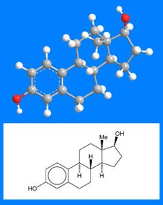 "I love the ""Molecule of the Week"" feature on the American Chemical society website.  This week:  Estradiol"