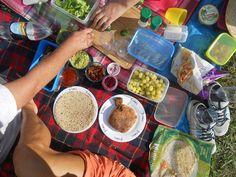 picnic with friends at Brogo Dam in NSW/Australia