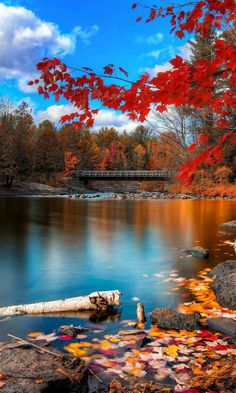 Autumn scenery - Tap to see more beautiful nature wallpapers! Beautiful World, Beautiful Places, Beautiful Pictures, Beautiful Scenery, Simply Beautiful, Amazing Places, Landscape Photography, Nature Photography, Photography Aesthetic