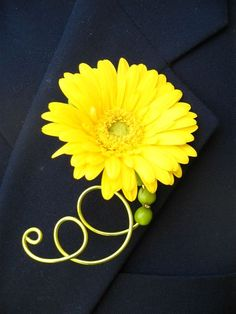 Google Image Result for http://4.bp.blogspot.com/_bOMDzxsOOVI/TGLgixnYqPI/AAAAAAAABsQ/yh68BOajl0Y/s1600/thumbnails_yellow_germini_boutonniere-yellow_germini_corsage.jpg
