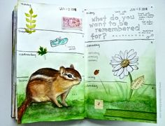 Jenny's Sketchbook: Chipmunk in my Journal