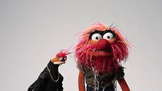 animal the muppets the muppets abc pepe the prawn the muppets top 5 people youll meet at work
