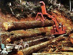 Logging Equipment Picture Galleries