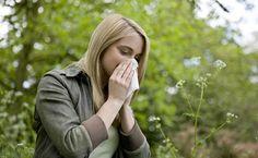 """Esta primavera será """"algo peor"""" para los alérgicos al polen en la provincia"""