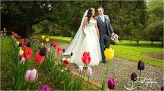 House On A Hill, Ireland, Wedding Photography, Garden, Garten, Lawn And Garden, Gardens, Irish, Wedding Photos