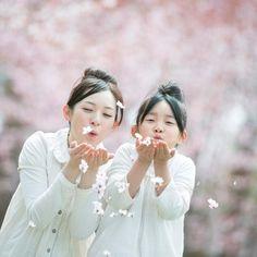 桜の花びらを吹く親子 (c)hororo style