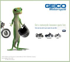 Geico Quote Adorable Geico Insurance  Advertisement  Pinterest