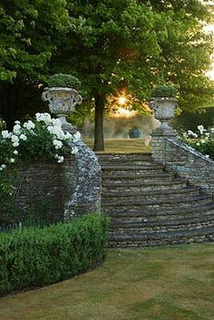 step down grand garden starcase in stone with urns, boxwood, large trees