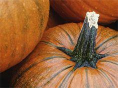 #Recipe: Pumpkin soup