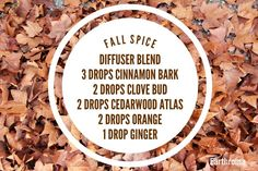 Enjoy the warm scents of Fall with this wonderful diffuser blend!