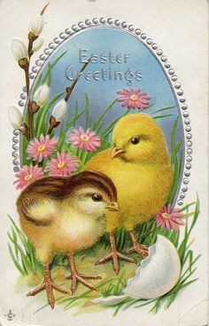 Vintage Easter Chicks images-these are pretty big) Easter Greeting Cards, Vintage Greeting Cards, Vintage Postcards, Easter Art, Easter Crafts, Easter Ideas, Oster Dekor, Easter Pictures, Diy Ostern
