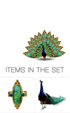 """""""Peacock Art"""" by amy-jean ❤ liked on Polyvore featuring art"""