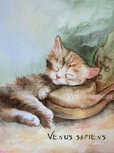 8x10in А5 А4 stampa acquerello gattino Art Print di VenusSapiens