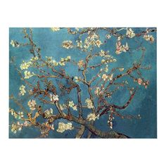 """ShopHQ Shopping - Vincent van Gogh """"Almond Blossoms"""" x Ready to Hang Gallery Wrap. Get lost in this blossoming beauty from the post-Impressionist painter Vincent van Gogh! This ready to hang, gallery-wrapped art piece features an Van Gogh Pinturas, Fleurs Van Gogh, Van Gogh Arte, Van Gogh Almond Blossom, Kunst Poster, Painting Prints, Art Prints, Van Gogh Paintings, Blossom Trees"""