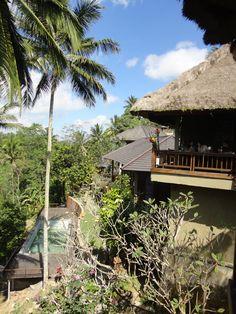 Ubud, com suas plantações de arroz e côco, Bali, Indonésia