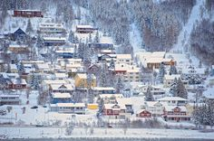 Houses on the Hillside, Tromso, Norway by Diana Robinson on 500px