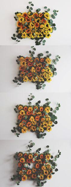 Decomposition by Rachel Bartz