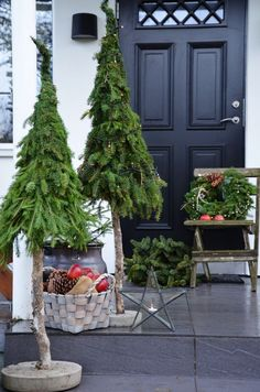 The garden is also visible! The most beautiful Christmas decoration for outdoors - Weihnachten - Noel Christmas Planters, Small Christmas Trees, Christmas Porch, Rustic Christmas, Christmas Projects, Handmade Christmas, Christmas Holidays, Christmas Ideas, Merry Christmas