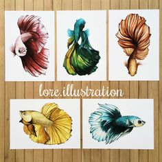 Betta fish artwork by my wife Fish Drawings, Art Drawings, Beta Fish Drawing, Watercolor Fish, Watercolor Paintings, Tattoo Watercolor, Betta Fish Tattoo, Fish Artwork, Scratchboard Art