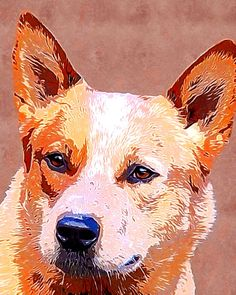 Australian cattle dog red heeler art by AnimalArtIncognito on Etsy