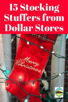 Stocking Stuffers you can find at dollar stores. Great ideas to make your holiday season less stressful and more fun. Frugal Christmas, Dollar Store Christmas, Diy Christmas Tree, Christmas Stockings, Christmas Decorations, Cheap Christmas, Christmas Ideas, Xmas, Christmas Crafts For Gifts For Adults