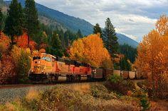 Off the rails — autumnhollow:   by: deby dixon