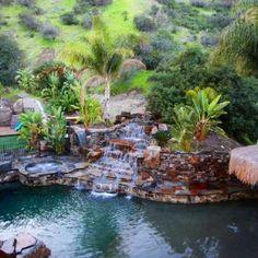 Backyard waterfall and pool