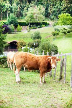The Basque Countryside. Euskal Herria - Basque Country