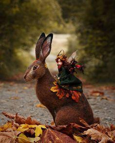 for the faeries ❧ Autumn fairy riding a hare! Needle Felted Animals, Felt Animals, Wet Felting, Needle Felting, Magic Creatures, Felt Fairy, Paperclay, Fairy Art, Fairy Dolls