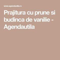 Prajitura cu prune si budinca de vanilie - Agendautila