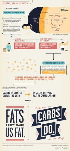 Pasta, Not Bacon, Makes You Fat. But How? #infographic