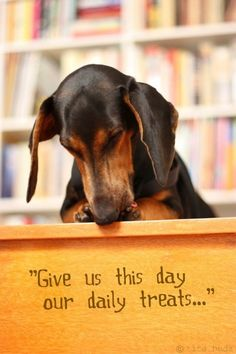 Give us this day our daily treats... by marquita