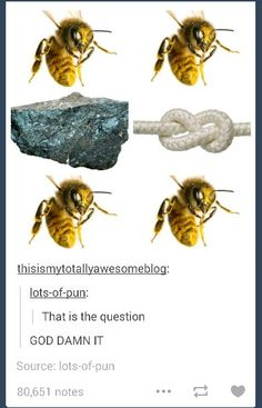 "SO PUNNY<---at first I thought it said ""bee bee rock knot bee bee"" I get the pun now and it is awesome"