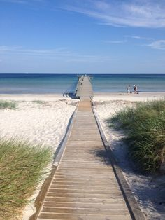 A path to the sea in Ljunghusen, Sweden ❥ Don't even have to get sand in your shoes!