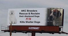 AKC Breeders Rescue & Reclaim their displaced dogs.  PETA Kills Shelter Dogs.  According to published records from the Virginia Department for Agriculture and Consumer Services,the organization euthanized 1,675 of the 1,877 animals in its care in 2012, including 602 dogs and 1,045 cats. In the last 11 years, PETA has euthanized 29,426 dogs, cats, rabbits and other domestic animals.