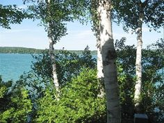 Cottage vacation rental in Walloon Lake from VRBO.com! #vacation #rental #travel #vrbo