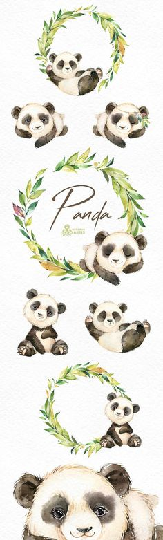 This Panda set of 17 high quality hand painted watercolor images. Perfect graphic for any projects, babyshowers, wedding invitations, greeting cards, photos, posters, quotes and more. ----------------------------------------------------------------- This listing includes: 17 x Images in