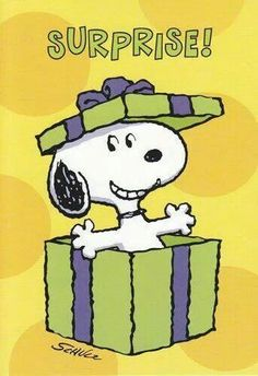 It's Snoopy Happy Birthday Gifs Snoopy, Images Snoopy, Snoopy Pictures, Snoopy Quotes, Peanuts Cartoon, Peanuts Snoopy, Peanuts Comics, Snoopy Birthday, Birthday Wishes