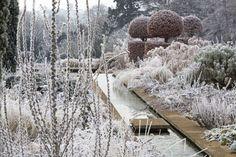 Broughton Grange, Oxfordshire; garden designed by Tom Stuart-Smith; Verbascum