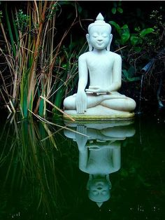 Buddha - Zen place...maybe at the little fish pond?  :-)