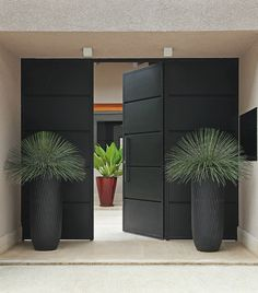 Contemporary tall planters by modern doorway. By Ana Paula Magaldi. Repinned by www.claudiadeyongdesigns.com www.thegardenspot.co.uk