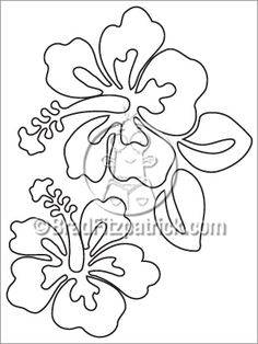 Hibiscus Coloring Sheet Hibiscus Coloring Page | Coloring Pages & Sheets