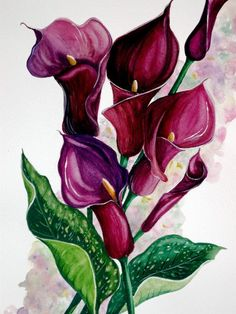 Purple Callas Painting by Karin Best - Purple Callas Fine Art Prints and Posters for Sale