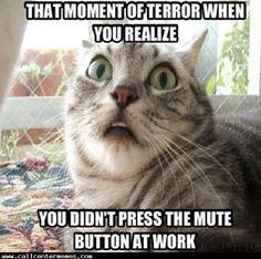 383 Best Call Center Memes Images Funny Memes Memes Customer