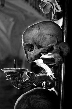 Gothic skull wall sconce from The Everyday Goth on Tumblr