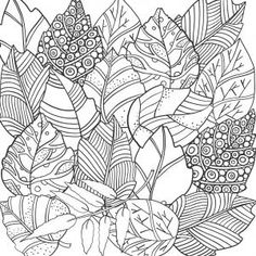 Pattern Coloring Pages, Coloring Book Pages, Printable Coloring Pages, Coloring Sheets, Flower Coloring Pages, Doodle Background, Background Patterns, Floral Doodle, Doodle Coloring