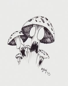 Shrooms Ink Drawing By Stagi Works by StagiWorks on Etsy, $18.00