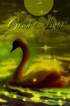 Good Night Everyone, Good Night Gif, Good Night Image, Good Night Quotes, Good Morning Sunrise, Good Morning Good Night, Day For Night, Night Time, Goodnight Quotes Sweet