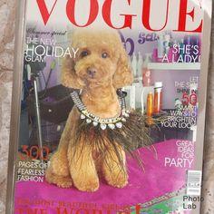 """Peluquería Canina Vivancos on Instagram: """"Dadu, caniche toy rojo, que forma parte de #dogfamilyvicancos desde sus 4 meses. Un cielo y una belleza, es el tesoro y la compañía de su…"""" Fashion Photo, Looks Great, Most Beautiful, Teddy Bear, Toys, Party, Holiday, Summer, Animals"""